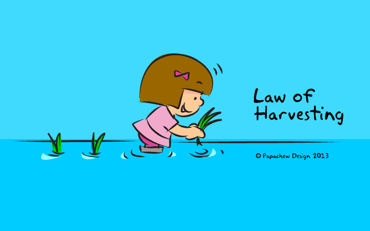 harvesting-main